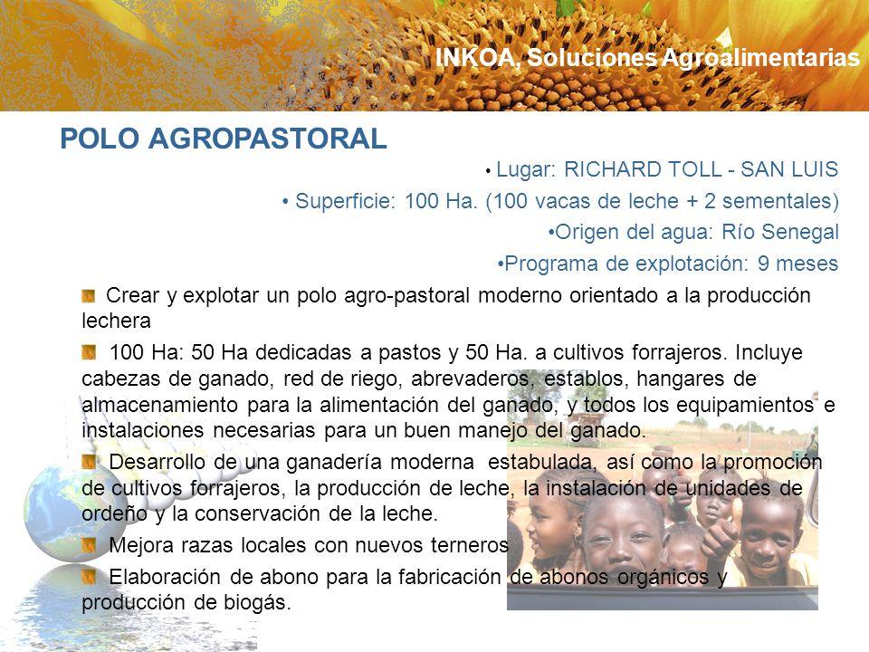 POLO AGROPASTORAL INKOA, Soluciones Agroalimentarias