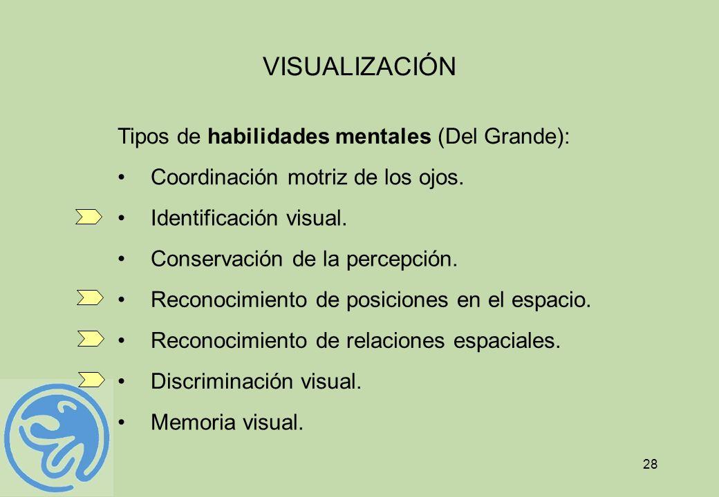 VISUALIZACIÓN Tipos de habilidades mentales (Del Grande):