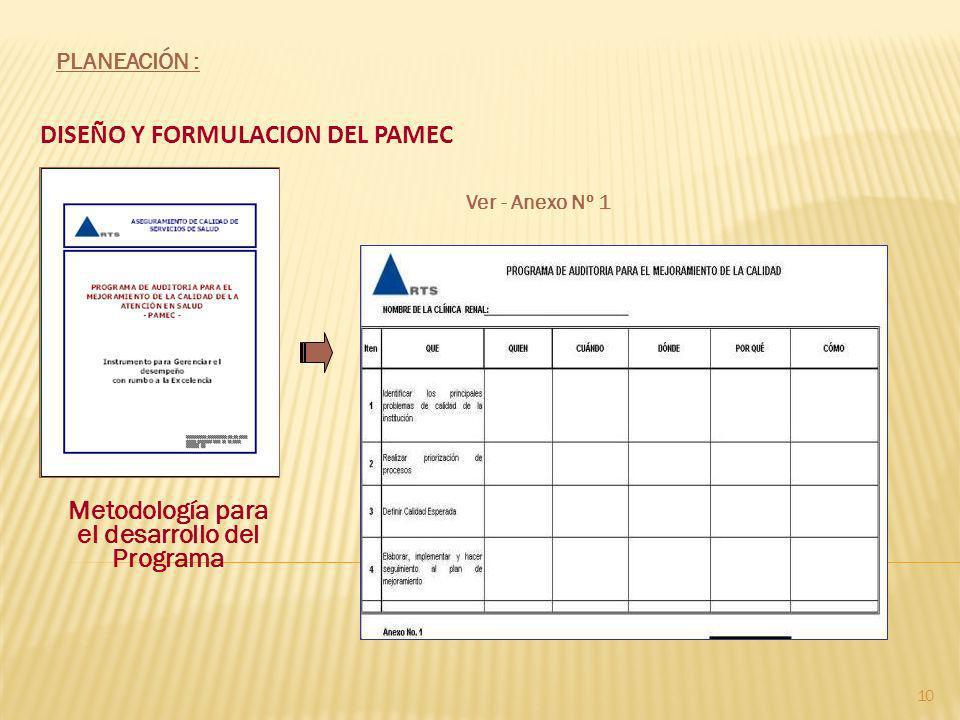 DISEÑO Y FORMULACION DEL PAMEC