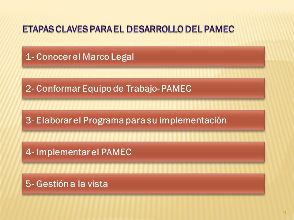 ETAPAS CLAVES PARA EL DESARROLLO DEL PAMEC
