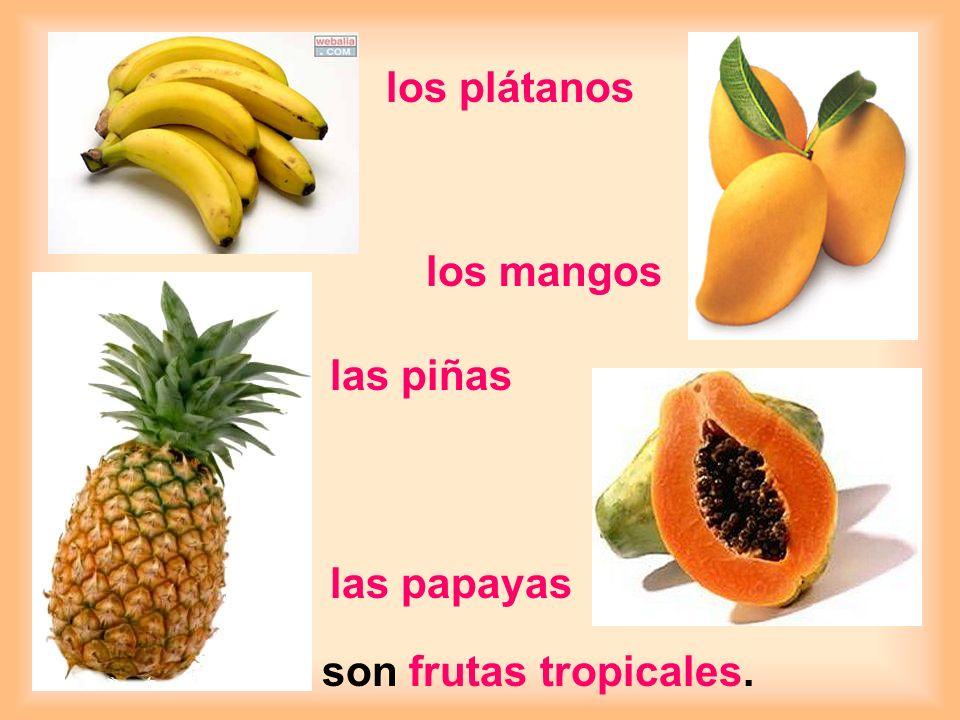 los plátanos los mangos las piñas las papayas son frutas tropicales.