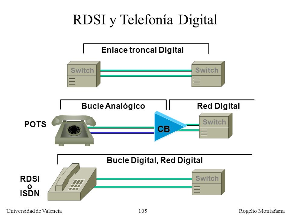 Enlace troncal Digital Bucle Digital, Red Digital