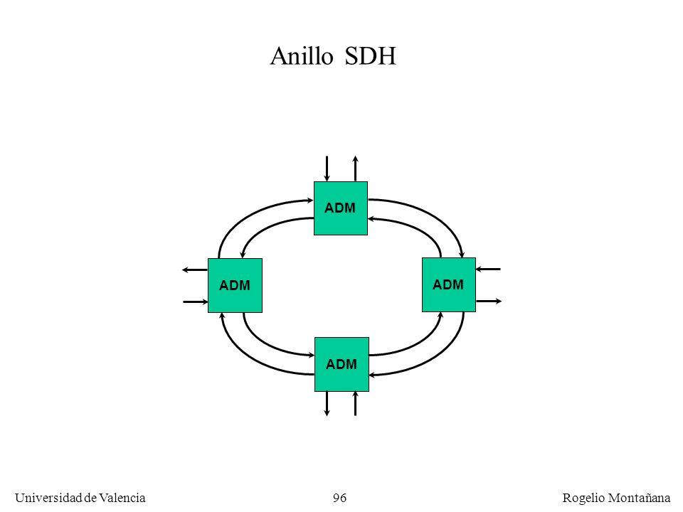 La Capa Física Anillo SDH ADM ADM ADM ADM
