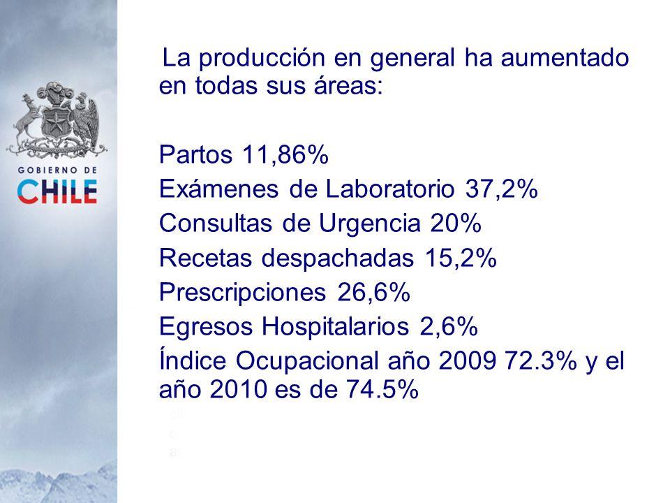 La producción en general ha aumentado en todas sus áreas: