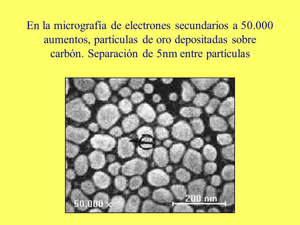 En la micrografía de electrones secundarios a 50