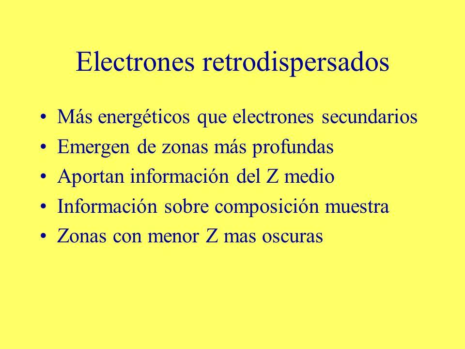 Electrones retrodispersados