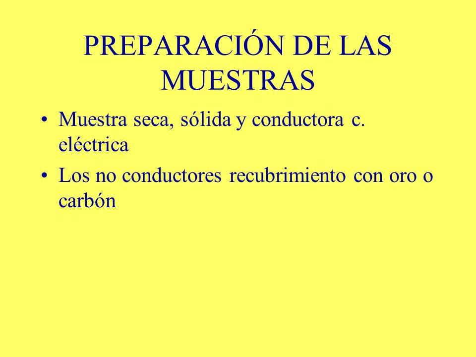 PREPARACIÓN DE LAS MUESTRAS