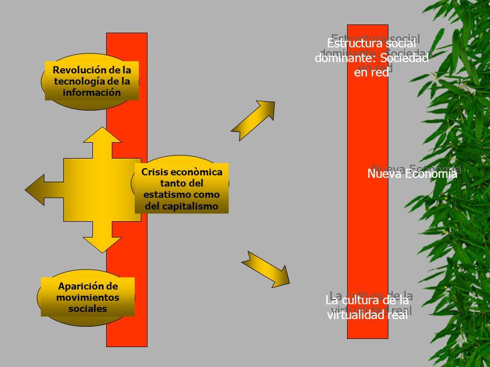 Estructura social dominante: Sociedad en red