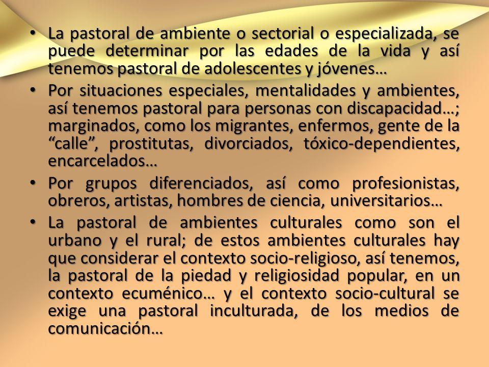 La pastoral de ambiente o sectorial o especializada, se puede determinar por las edades de la vida y así tenemos pastoral de adolescentes y jóvenes…