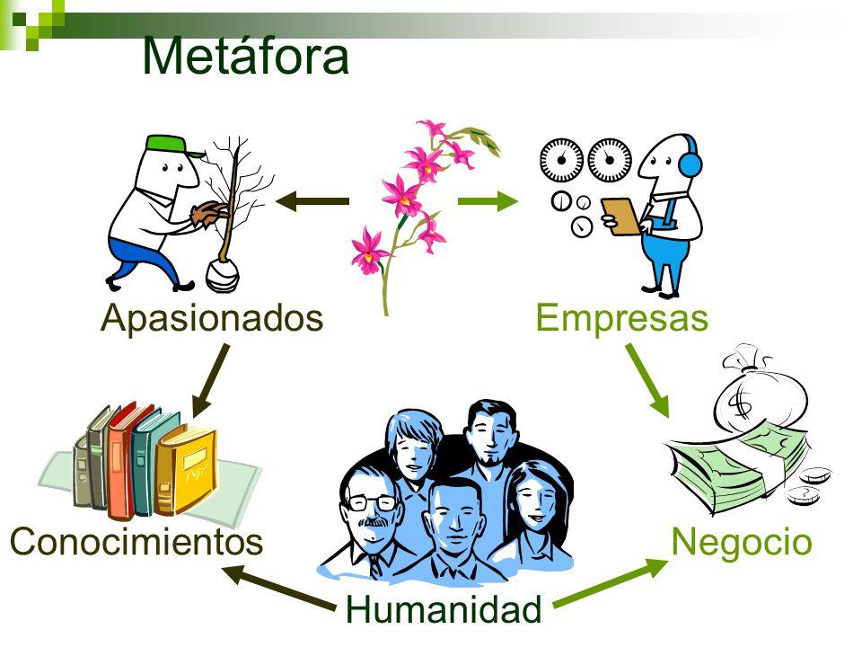 Metáfora Apasionados Empresas Conocimientos Negocio Humanidad