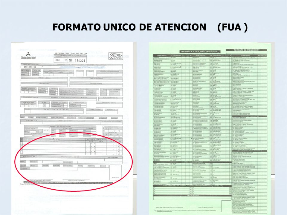 FORMATO UNICO DE ATENCION (FUA )