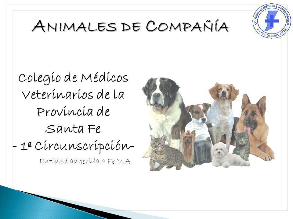 Colegio de Médicos Veterinarios de la Provincia de