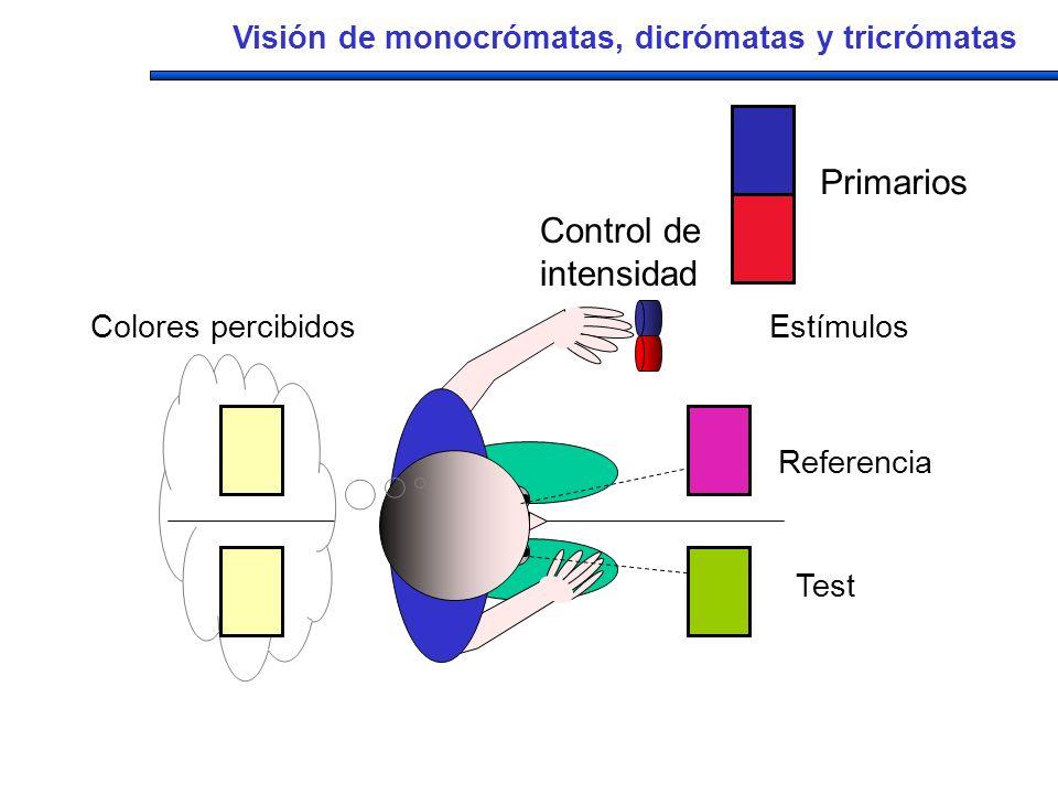 Primarios Control de intensidad