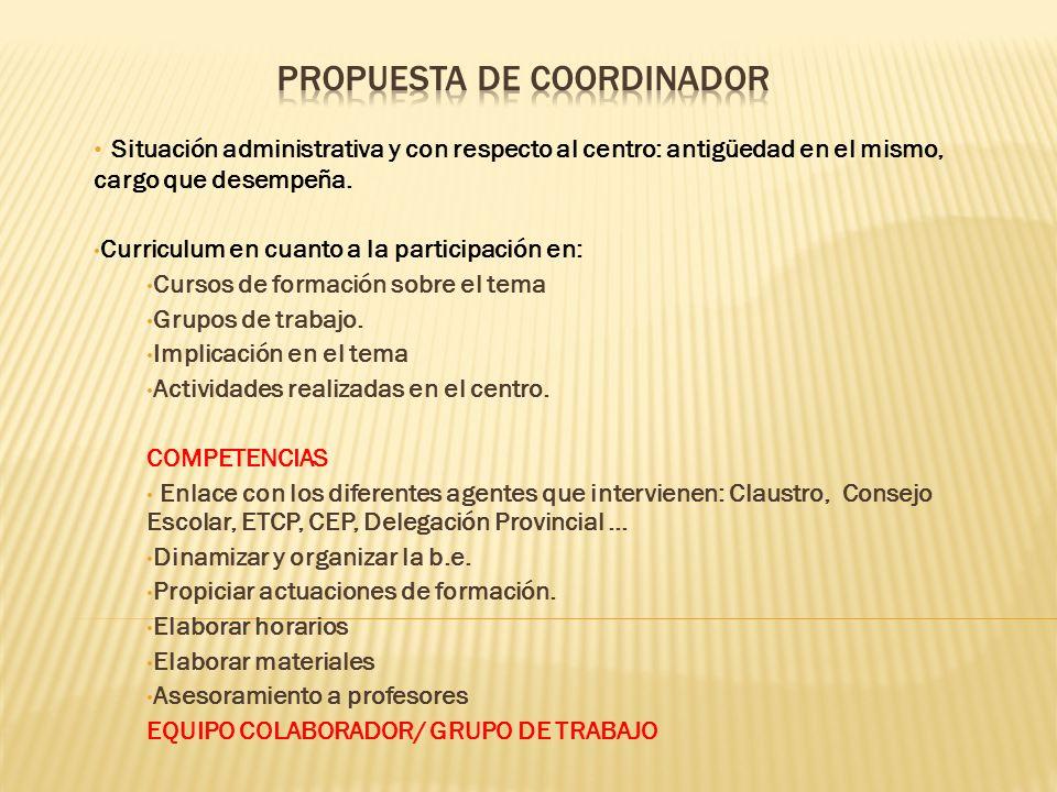 Propuesta de Coordinador