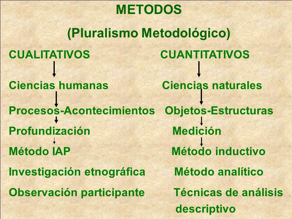 (Pluralismo Metodológico)