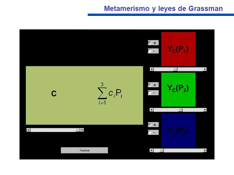 C YC(P1) YC(P2) YC(P3) C c1P1 c2P2 c3P3 C a1P1 a2P2 a3P3
