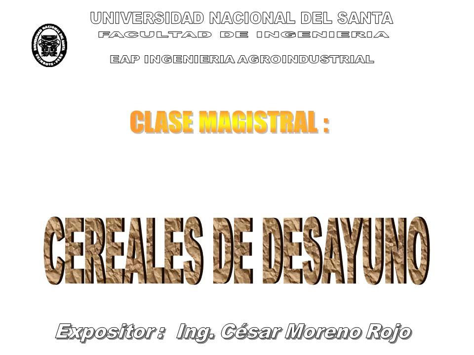 UNIVERSIDAD NACIONAL DEL SANTA FACULTAD DE INGENIERIA