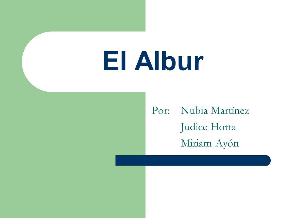 Por: Nubia Martínez Judice Horta Miriam Ayón