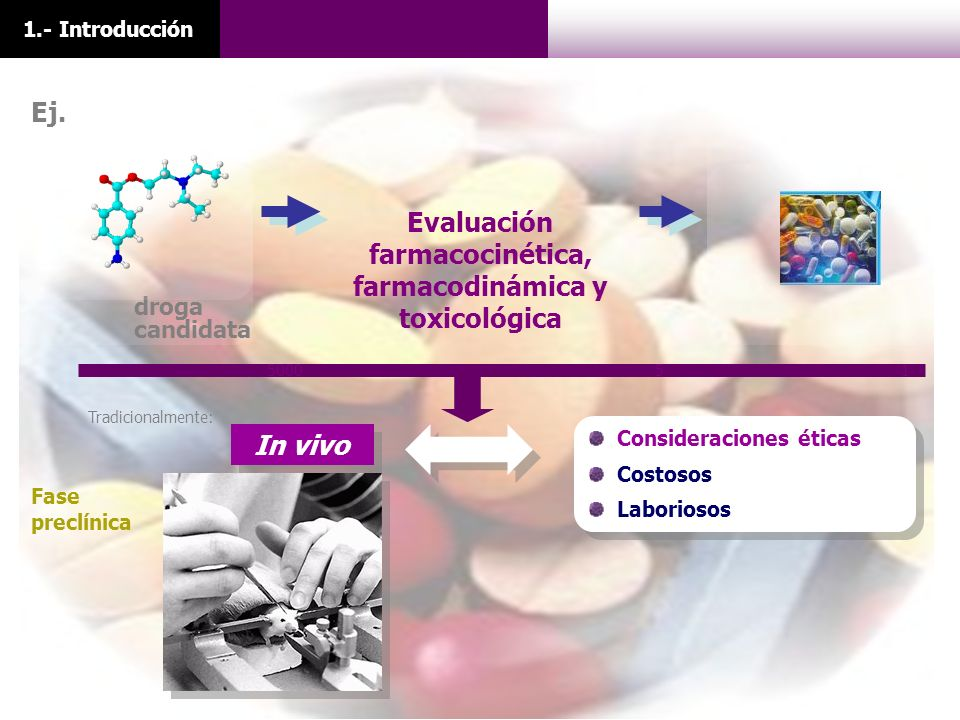 Evaluación farmacocinética, farmacodinámica y toxicológica