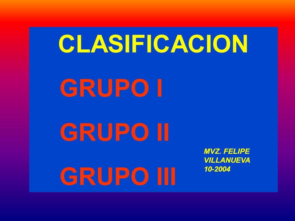 CLASIFICACION GRUPO I GRUPO II GRUPO III MVZ. FELIPE VILLANUEVA