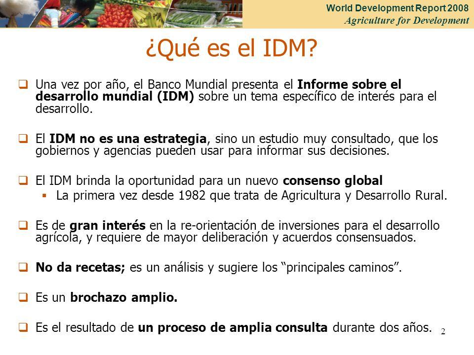 ¿Qué es el IDM
