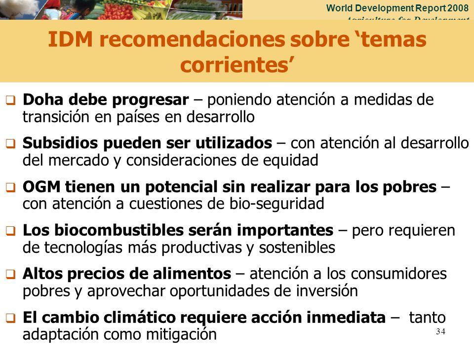 IDM recomendaciones sobre 'temas corrientes'