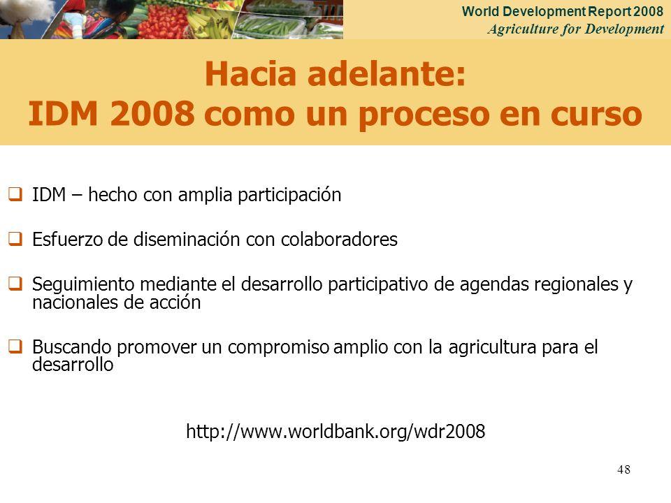 Hacia adelante: IDM 2008 como un proceso en curso
