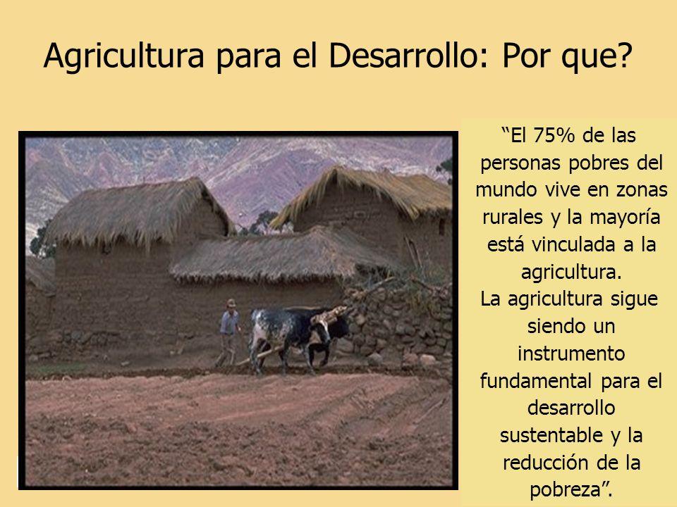 Agricultura para el Desarrollo: Por que