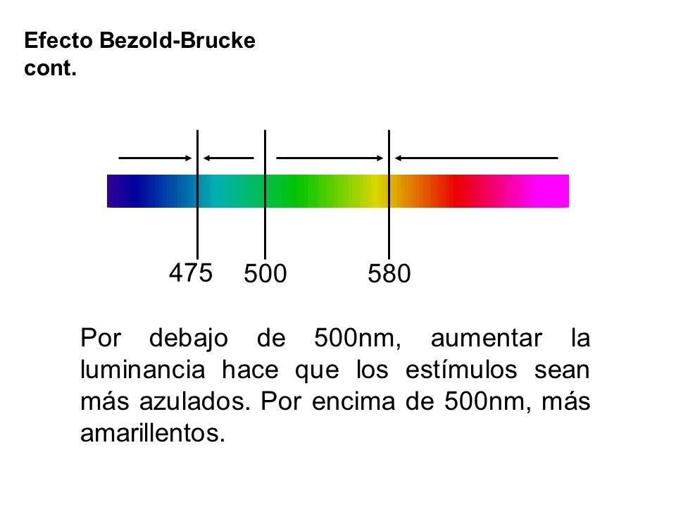 Efecto Bezold-Brucke cont.