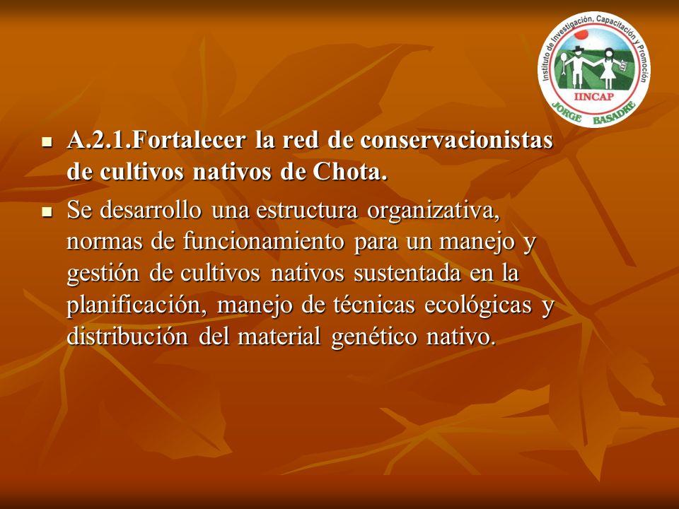 A.2.1.Fortalecer la red de conservacionistas de cultivos nativos de Chota.
