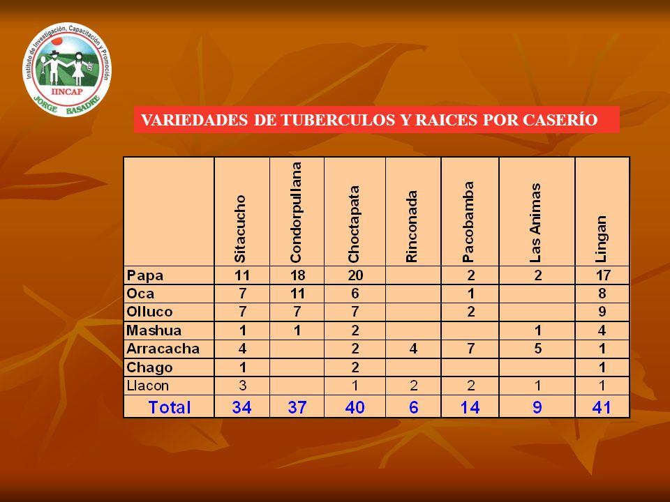 VARIEDADES DE TUBERCULOS Y RAICES POR CASERÍO