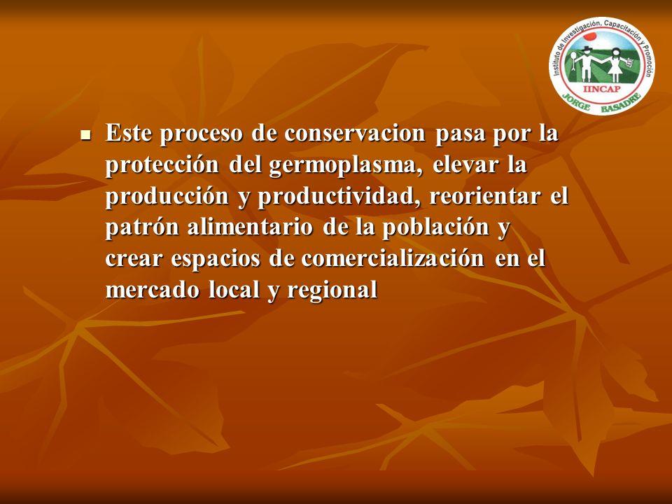 Este proceso de conservacion pasa por la protección del germoplasma, elevar la producción y productividad, reorientar el patrón alimentario de la población y crear espacios de comercialización en el mercado local y regional