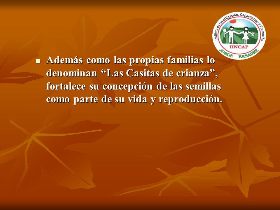 Además como las propias familias lo denominan Las Casitas de crianza , fortalece su concepción de las semillas como parte de su vida y reproducción.