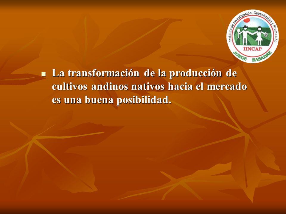La transformación de la producción de cultivos andinos nativos hacia el mercado es una buena posibilidad.