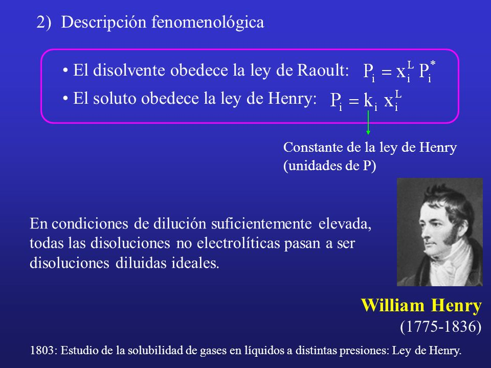 William Henry 2) Descripción fenomenológica