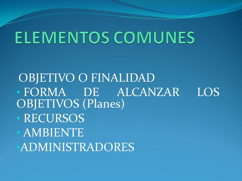ELEMENTOS COMUNES FORMA DE ALCANZAR LOS OBJETIVOS (Planes) RECURSOS
