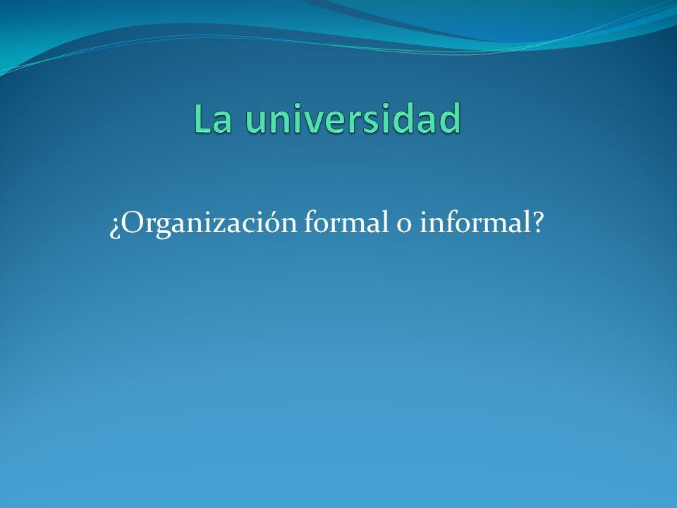 ¿Organización formal o informal
