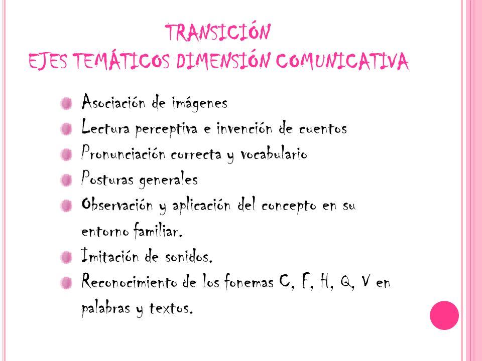 TRANSICIÓN EJES TEMÁTICOS DIMENSIÓN COMUNICATIVA
