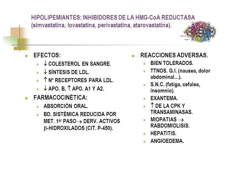 HIPOLIPEMIANTES: INHIBIDORES DE LA HMG-CoA REDUCTASA (simvastatina, lovastatina, perivastatina, atarovastatina).