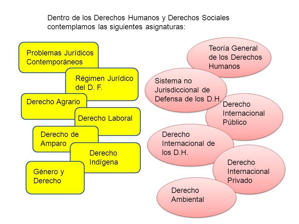 Dentro de los Derechos Humanos y Derechos Sociales contemplamos las siguientes asignaturas: