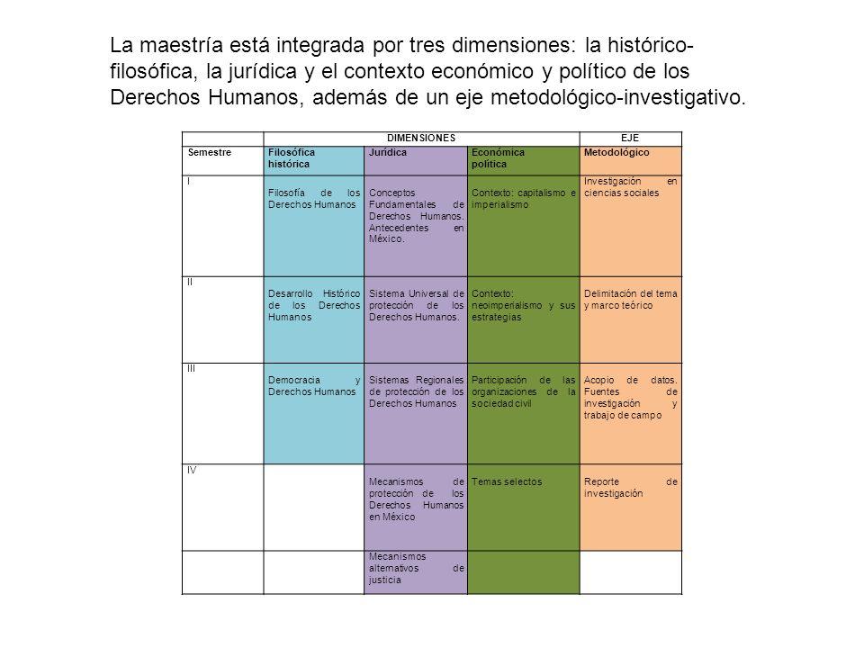 La maestría está integrada por tres dimensiones: la histórico-filosófica, la jurídica y el contexto económico y político de los Derechos Humanos, además de un eje metodológico-investigativo.