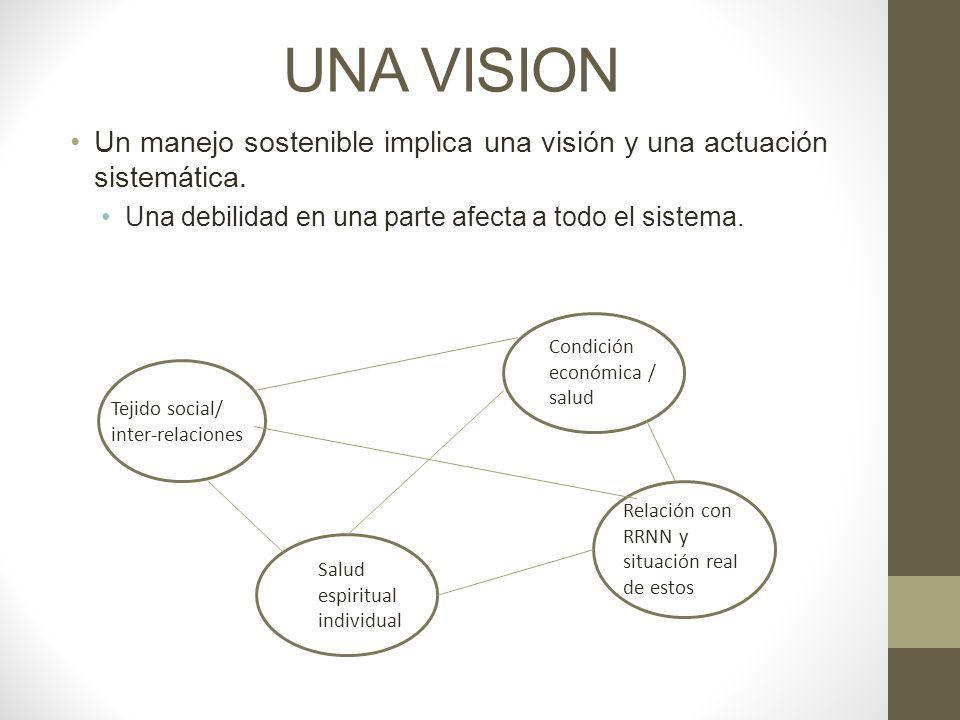 UNA VISION Un manejo sostenible implica una visión y una actuación sistemática. Una debilidad en una parte afecta a todo el sistema.