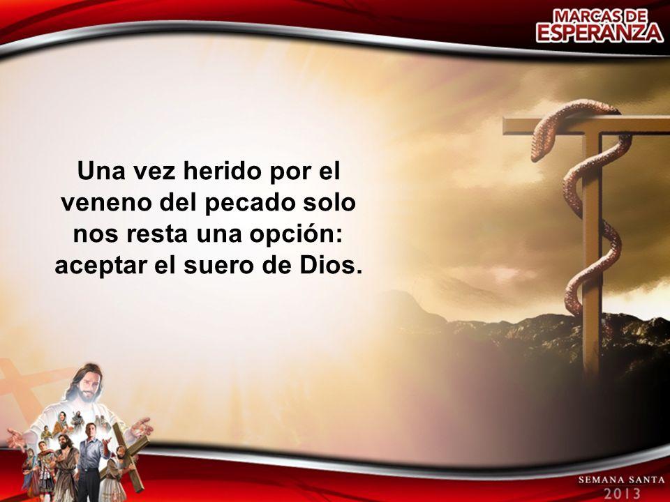 Una vez herido por el veneno del pecado solo nos resta una opción: aceptar el suero de Dios.
