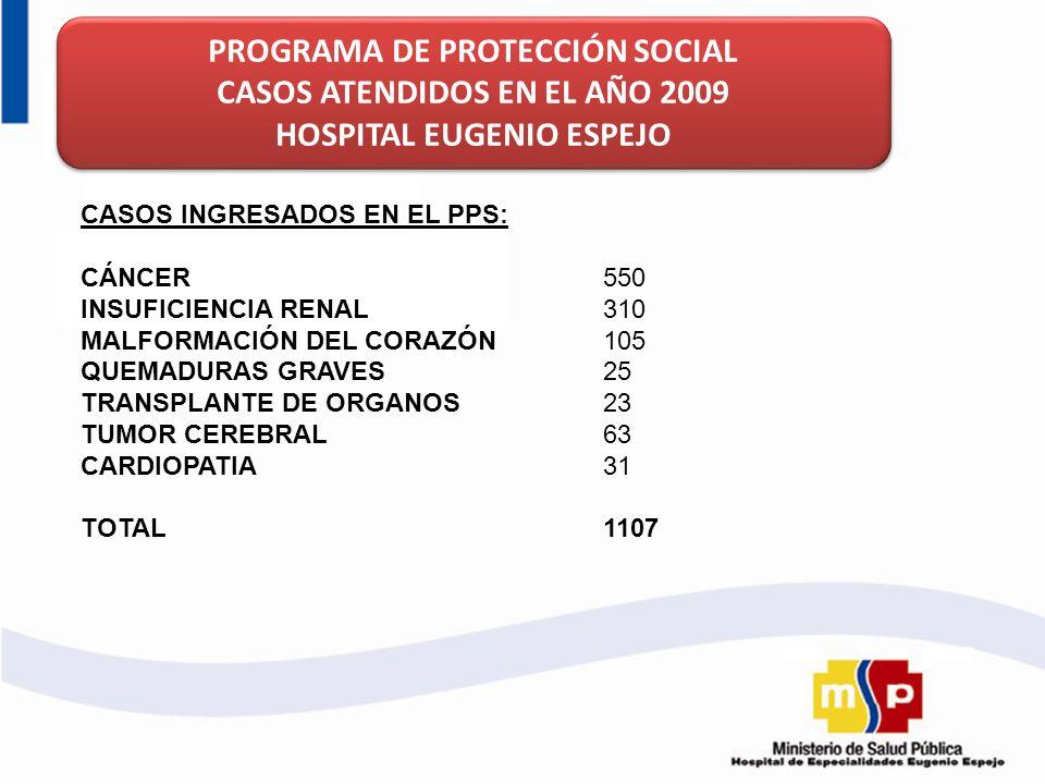 PROGRAMA DE PROTECCIÓN SOCIAL CASOS ATENDIDOS EN EL AÑO 2009