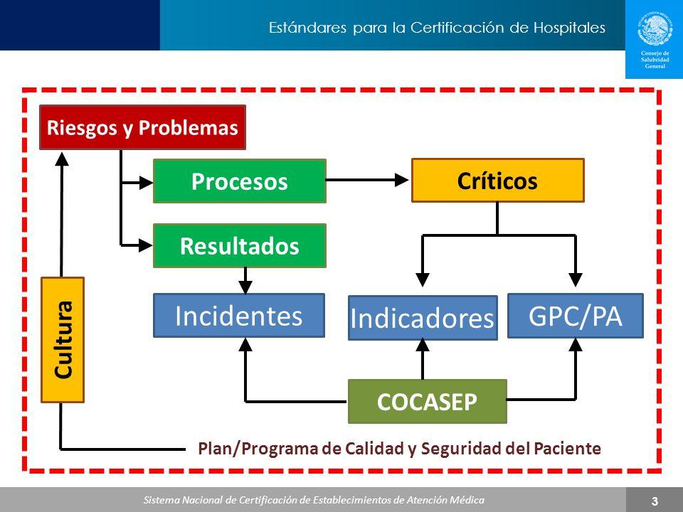 Plan/Programa de Calidad y Seguridad del Paciente