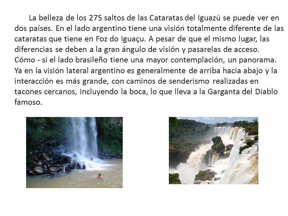 La belleza de los 275 saltos de las Cataratas del Iguazú se puede ver en dos países.