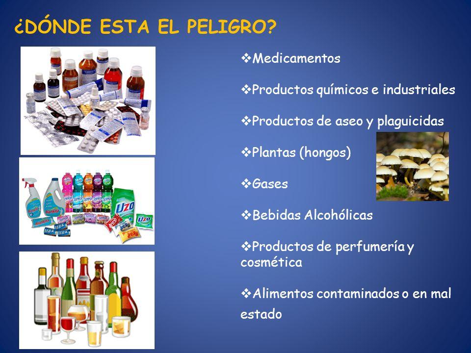 ¿DÓNDE ESTA EL PELIGRO Medicamentos Productos químicos e industriales