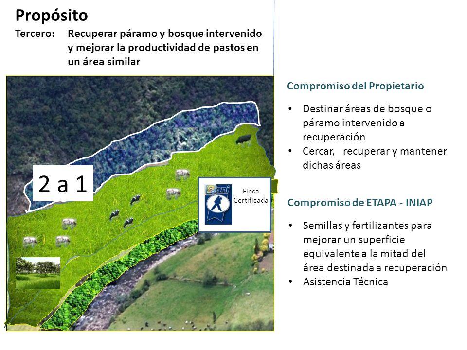PropósitoTercero: Recuperar páramo y bosque intervenido y mejorar la productividad de pastos en un área similar.