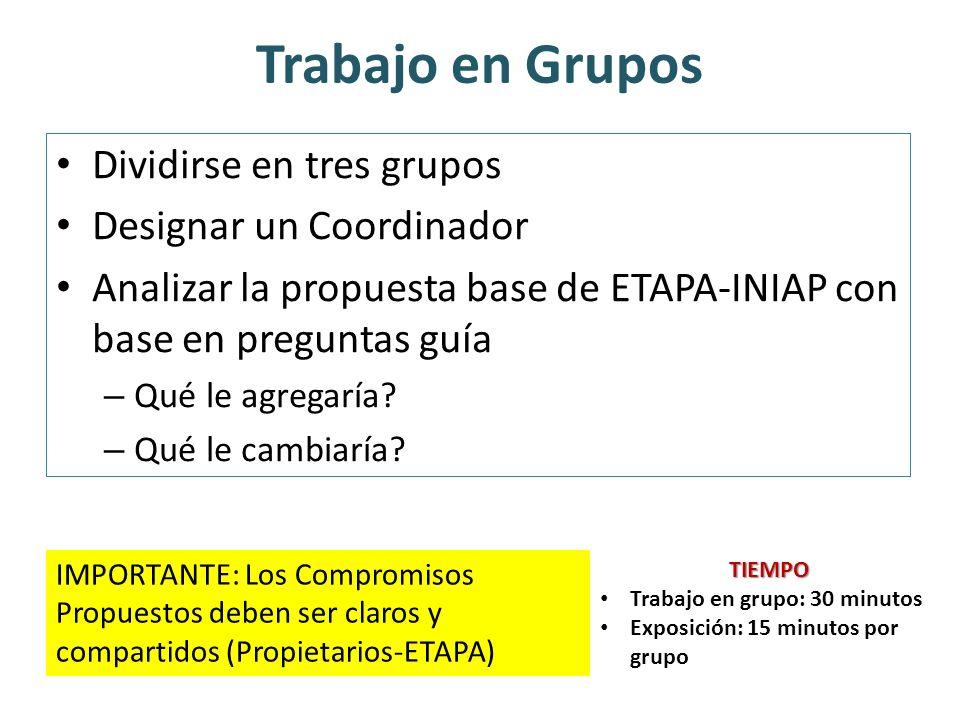 Trabajo en Grupos Dividirse en tres grupos Designar un Coordinador