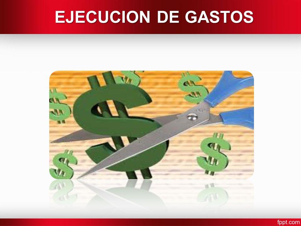 EJECUCION DE GASTOS